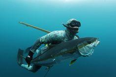 Spear Fish