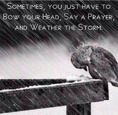 Sometimes when it rains, it pours. But, the sun will come out and tomorrow is a different day.
