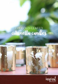 DIY Gold-Leafed Citr