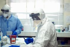 Scientists dig into Ebola's deadly genes for clues - PCHFrontpage   Local and National News, Search and Daily Instant Win Opportunities! - News