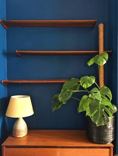 Dark blue walls, mid-century furniture pieces including shelves and lampbase and a monstera plant. Simple but beautiful!
