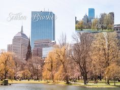 4 SEASON Instant Lightroom Brushes by KAICreation on Etsy