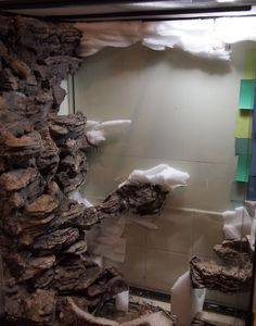 17 Best Images About Fish Tank Paludarium Vivarium On Of Custom Fish Tank Background Reptile Habitat, Reptile Room, Reptile Cage, Gecko Habitat, Diy Aquarium, Planted Aquarium, Vivarium, Aquariums, Bartagamen Terrarium
