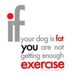 Normally I would agree with this, but if you know Lola, you KNOW we exercise her! She truly is big-boned!