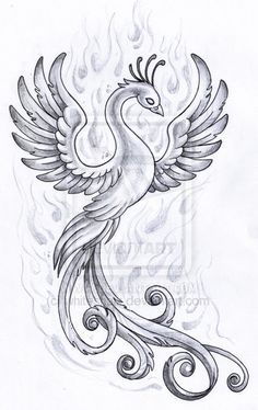 Phoenix design by *whiteshaix on deviantART on We Heart It - Phoenix design by *whiteshaix on deviantART on We Heart It Discover and share the most beautiful images from around the world Phoenix Design, Phoenix Tattoo Design, Phoenix Drawing, Phoenix Art, Ash Drawing, Drawing Ideas, Bird Drawings, Tattoo Drawings, Feniks Tattoo