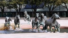 The Mustangs Of Las Colinas:  The largest equestrian sculpture in the world by sculptor Robert Glen is located in Williams Square, Irving,Texas. This magnificent larger than life sculpture was installed in 1984 as a memorial to the heritage of Texas. The mustangs are depicted racing through a flow of water in a granite stream. Mustangs were the escaped descendants of horses brought to America by the Spaniards.  They roamed wild, northwest across Texas from Mexico.