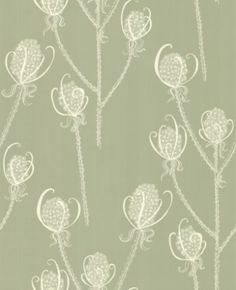 Teasels - Shepherd (TSL3) - Earth Inke Wallpapers - A charming Teasel flower head motif design with a large scale pattern containing tiny intricate detail. Shown in the subtle Shepherd cream on soft green colourway. Please request sample for true colour.