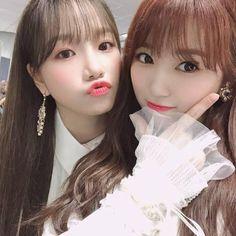 Nako and Yuri Au Ideas, Pop Idol, Nanami, Extended Play, The Wiz, Japanese Girl, Yuri, Girl Group, Kpop