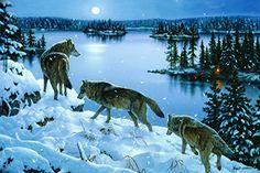 67 Best Art By Jerry Gadamus Images Wild Animals