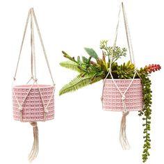 Hanging Succulents, Succulent Pots, Hanging Planters, Planter Pots, Hanging Flower Pots, Cement Planters, Flower Planters, Contemporary Planters, Silk Plants