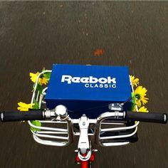 #Bikeporter en primavera #avantumbikes