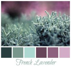 french colorspalette   For the home... / French lavender color palette