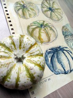 Studies of a pumpkin from different viewpoints and using different mediums / colours. Watercolour > Ink By janelafazio