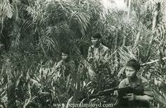 A Viet Cong squad prepare to attack US troops during the Vietnam War. Vietnam History, Vietnam War Photos, Military Veterans, Vietnam Veterans, World History, World War Ii, My War, North Vietnam, American War