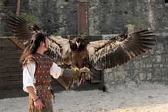 Les aigles des remparts - Provins