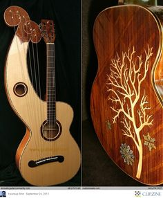 Oh my word... not exactly sure what this is but it's cool! Acoustic Guitar
