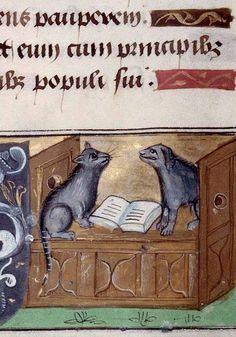 С(л)ияние чистого разума - Кошки средневековых манускриптов