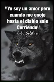 Pin by Kathia Pineda on Lobos Fight For Your Dreams, Wolf Quotes, Lone Wolf, Spanish Quotes, Qoutes, Wisdom, Thoughts, Feelings, Sayings