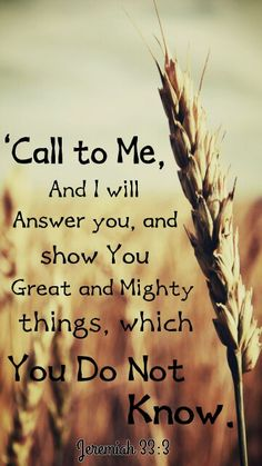 Call To Me and I will answer you, and I will show you great and mighty Things…