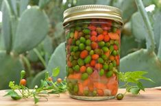 Pickled pequin peppers (Chile pequin en escabeche) – Bread and Tortillas Canning Vegetables, Veggies, Ranch Recipe, Looks Yummy, Canning Recipes, Canning Jars, Stuffed Hot Peppers, Fall Recipes, Mexican Food Recipes