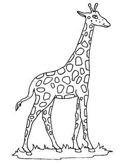bildergebnis für zentangle giraffe vorlage   giraffen, schnittmuster für stofftiere, tier schablone