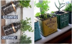 enfeites para cozinha mini jardim