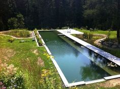 A BioNova natural swimming pond installation in Canada...no chlorine. I want a swimming pool but I hate chlorine. Have to check these out.