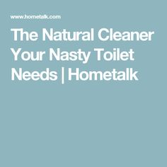 The Natural Cleaner Your Nasty Toilet Needs | Hometalk