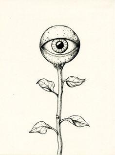Saudade ( cyclope fleur )