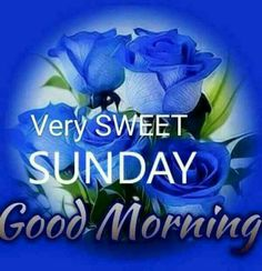 😊happy sunday 😊 - very sweet sunday good morning - sharechat Happy Morning Quotes, Sunday Quotes Funny, Daily Quotes, Happy Sunday Images, Good Morning Images, Good Morning Greetings, Good Morning Wishes, Sweet Sundays, Weekday Quotes