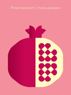 """Fruit: Pomegranate"" Graphic/Illustration by Christopher Dina posters, art prints, canvas prints, greeting cards or gallery prints. Find more Graphic/Illustration art prints and posters in the ARTF."