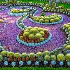 The Cactus Park in Norrkoping, Sweden |Beautiful Cactus Succulent Garden