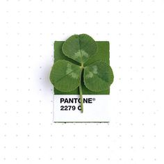 This Designer Matches Objects with Pantone Colors - #imgur