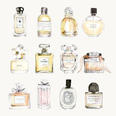 Fashion Sketches Chanel Perfume Bottles Ideas For 2019 Chanel N5, Chanel Perfume, Coco Chanel, Popular Perfumes, Chance Chanel, Illustration Mode, Watercolor Drawing, Holiday Gift Guide, Fashion Sketches