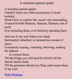 thesis statement for a noiseless patient spider Can anyone help me with my thesis, comparing whitman's a noiseless patient spider to matthew arnold's dover beachi am suppose to do a compare discuss the retreat a typical metaphysical religious poem.
