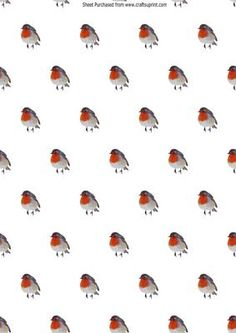 little red robins backing paper on Craftsuprint designed by Nick Bowley - little red robins backing paper - Now available for download!