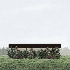 Khora | Proposal for a Summer Pavilion, Pedro Duarte Bento 2014