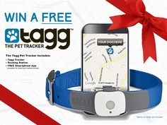 Win a FREE Tagg Pet Tracker & Activity Monitor with 2 months service included! Details inside!