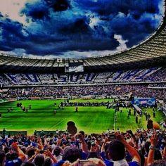 96 melhores imagens de Cruzeiro Esporte Clube  ec86da4305601