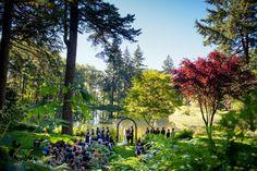 Bridal Veil Lakes Wedding Photography