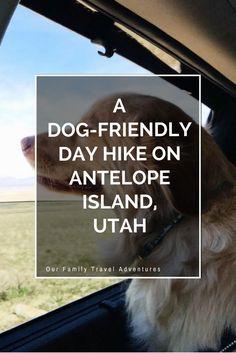 A Dog-friendly Day Hike on Antelope Island, Utah
