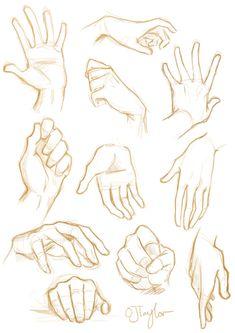 Como desenhar mãos Um tutorial de arte - Arte no Papel Online Anatomy Sketches, Body Sketches, Anatomy Drawing, Drawing Sketches, Sketching, Sketches Of Hands, Chibi Drawing, Drawing Drawing, Hand Drawing Reference