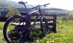 Bike Arena Tour Nr. 12 - Mollseifen & Hesborner Wald