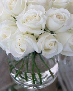 Architecture Decor Flowers | AllThingsWhite | RosamariaGFrangini | White Roses in a Vase, La Maison des Roses                                                                                                                                                     More