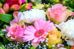birth_month_flowers-primary-1920x1280px_pixabay.jpg (1920×1280)