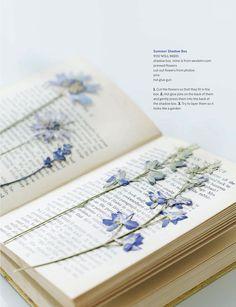 Blue flowers on Sweet Paul Magazine - Summer 2012