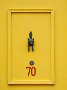 yellow Foxy door @Alex Jones Jones Mutch It can be another color- as long as its bright!
