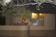Classic Safaris - Kruger National Park Safaris Kruger National Park Safari, National Park Tours, National Parks, Budgeting, Wildlife, Day, Classic, Plants, Chalets