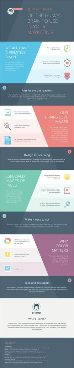 12 Secrets of the Human Brain to use in Your Marketing Use the primitive brain in marketing tactics, research suggests we process emotion 5 times faster than our conscious brain. The gut reaction. #Infographic via @Emma #DigitalPsychology #Psychology #Marketing #Neuromarketing