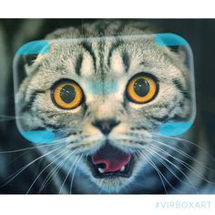 """An awesome Virtual Reality pic! Virtual Reality Art """"The cat in VR""""  #vrart #virboxart #catvr #cat #playstationvr #VR #virtualreality #AR #augmentedreality #MR #mixedreality  #GoogleCardboard #Oculusrift #osvr #Gearvr by virbox360 check us out: http://bit.ly/1KyLetq"""